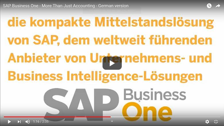 Buchaltung mit SAP Business One