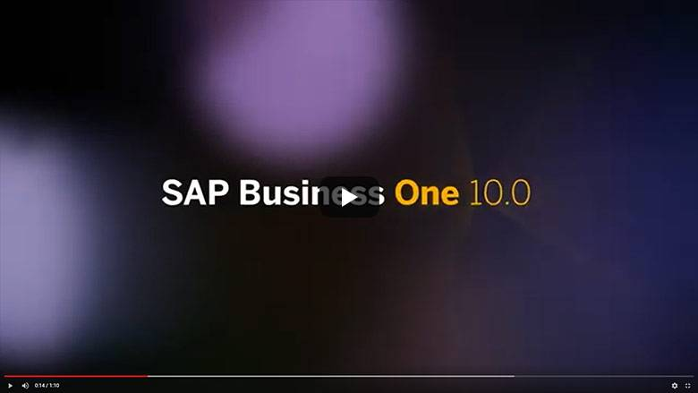SAP Business One Version 10.0 Teaser